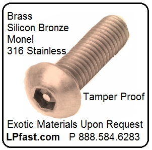 Brass Tamper Proof Screws