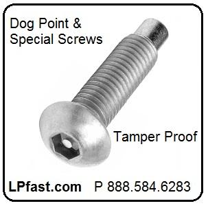 Dog Point Tamper Proof Screws
